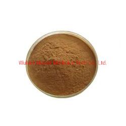 نبات الأعشاب CAS 82854-37-3 مسحوق إيكيناكسسايد المواد الخام Echinacoside السعر Cistanche Tubulosa Extract Echinacoside للبيع