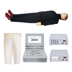 Best Price Resuscitation Training 터치 스크린 컨트롤 CPR 교육 Manikin