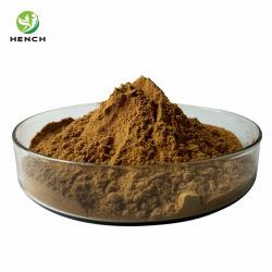 多糖類10%-50% Ganoderma Lucidumの粉のReishiのエキス