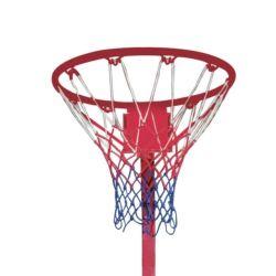 Alberino del Netball con la rete bianca del basamento o la rete variopinta