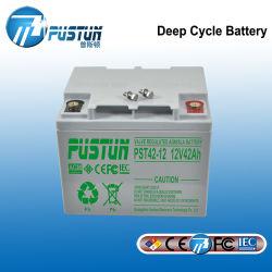 UPS-Batterie/Stromversorgung mit hoher Einleitung-Kinetik 12V42ah