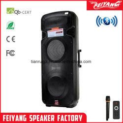 Feiyang dubbele 15-inch professionele oplaadbare luidsprekers met HiFi-microfoon