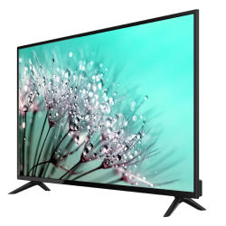 تلفزيون ذكيّة بيتيّة لأنّ [كزكهستن] أوزبكستان [كرغزستن] تركمانستان تاجكستان 55 بوصة [أندرويد] [لكد] تلفزيون