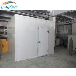 Cámaras Frigoríficas/congelador/congelado Habitación con una sola puerta de la hoja