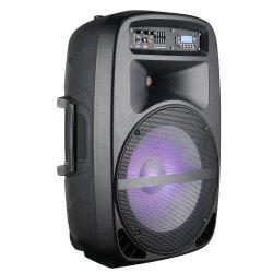 15inch de actieve Spreker van Subwoofer van de Partij met Macht Mixer/USB/SD/Bluetooth