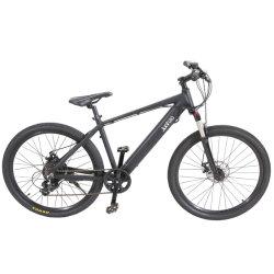 Bicicletta Elettrica Da Montagna Deragliatore Green Power 21 Velocità Con Batteria Al Litio