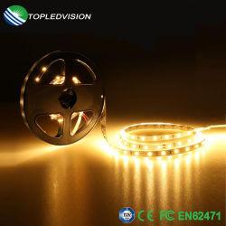High Bright étanche SMD2835 Cordon LED Bande LED avec la CE pour la décoration lumière TUV
