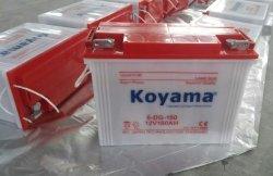 tiefe Schleife-Batterie der röhrenförmigen trockenen Aufladeeinheits-6-Dg-160-12V160ah für elektrisches Dreirad