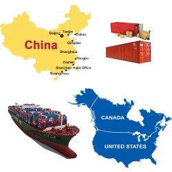 Fuzhou Hongkong Ningbo Port Expédition transitaire Agence de la société