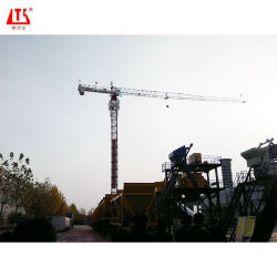 8 t de carga máx. Televisão topo grua-torre para Bridge/Station/Construção do Site
