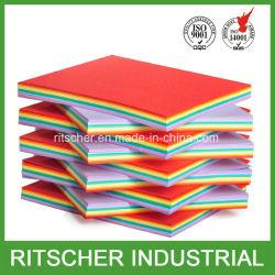 La pâte de bois 75g Lettre 8,5x11 Taille du papier copie couleur