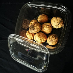 Embalagem de 16 onças descartáveis Punnet Redonda alimentar