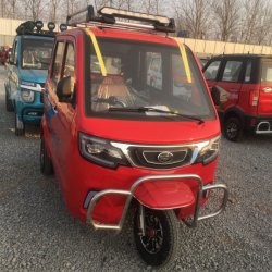 Protección del Medio Ambiente de alta calidad popular vehículo eléctrico/Car