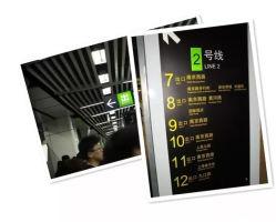Blanco de alta calidad de señal de tráfico pintura de señalización