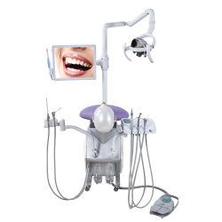 치과 교육 팬텀 Simulatior를 가르치는 대학 교육