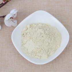 Repollo deshidratado en polvo a granel con el mejor precio