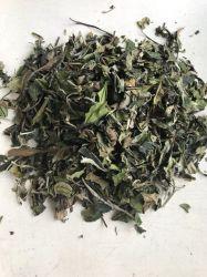 White Peony Tea Leaf 6902 pour le marché de l'UE