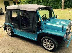 골프를 위한 EV Moko 전차, 여름 휴가 차, 차를 보는 광경