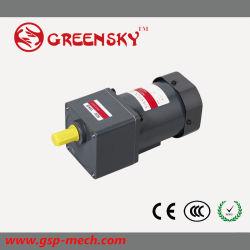 1개 단계 110V/220V 60W 90mm AC 감응작용 기어 모터