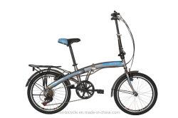 """20"""" da estrutura de aço a dobragem Aluguer Shimano 7 Bicicleta de velocidade"""