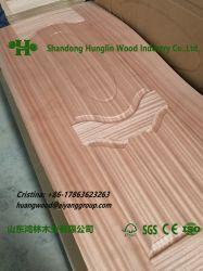 Pelle di legno commerciale del portello del compensato della prova dell'acqua