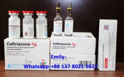 Ceftriaxona 1 g