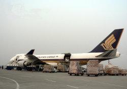 中国からのベトナムの各戸ごと配達への経済的な航空貨物の転送