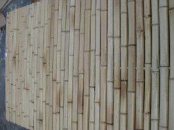 Natürliche horizontale Zäune