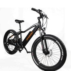 Prix compétitif belle qualité de la fourche avant de la suspension du moteur de VTT vélo de montagne de graisse Ebike