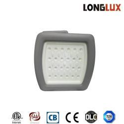 indicatori luminosi protetti contro le esplosioni del baldacchino 40W per la lampada della stazione di servizio LED