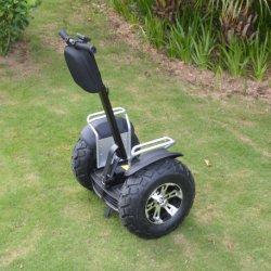二重電池が付いている21インチのバランスEのスクーターの電気自動車