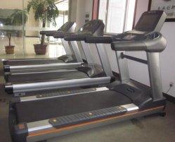 専門の適性装置か体操装置のコマーシャルのトレッドミル