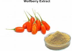 血の脂肪を下げるGojiの果実のエキス(Wolfberryのエキス)の粉