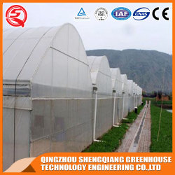 工場直送販売のプラスチックフィルムの準備ができた庭の温室の構造