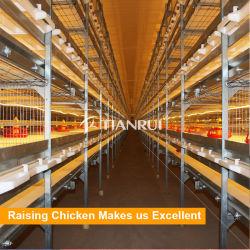 Typ Ei-Schicht-Huhn-Geflügelfarm-Brüter-Rahmen des China-Entwurfs-H