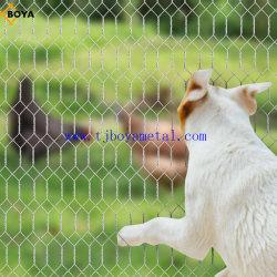مصنع الطيور Cage / سلك الدجاج / سلك الرنب من بويا