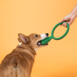 Cepillo de Dientes de Perro perro mastique juguetes Limpieza Stick Dental el blanqueamiento de dientes cuidados cachorro del Caucho Natural resistente a la mordedura del cepillado de formación para Perros Esg11531