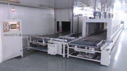 Automático de alta tecnología de la cinta transportadora continua de pelo
