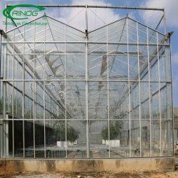 Venlo Glasc$multi-überspannung intelligentes grünes Haus für Gartenbau/Blumen-Markt/ökologische Gaststätte
