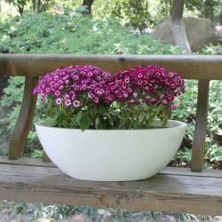 Fiberglas-Garten-Pflanzer Potpatio Möbel-Ausgangsdekoration-Blumen-Potenziometer der Filterglocke-Fo-269