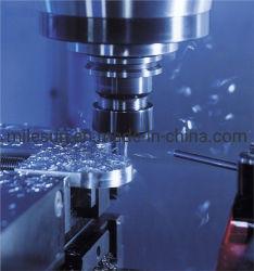 Stampaggio ad iniezione di plastica di fabbricazione originale/vite di gomma per i prodotti di gomma