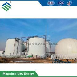 500kw CHP de Installatie van het Biogas voor de Behandeling van het Afval van het Landbouwbedrijf van het Vee