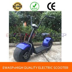 Noria 800W 1000W mini motos chopper moto eléctrica de dos ruedas Scooter equilibrio Auto