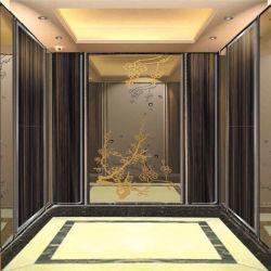 Folha de decoração em aço inoxidável gravada a chapa de aço para elevador armário ou porta elevatória