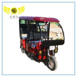 het Pedaal van Wielen 1000watt 24tube Drie staat de Elektrische Riksja Trike bij van de Motorfiets