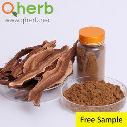 Herb Médecine Traditionnelle Chinoise le champignon Reishi Lingzhi Ganoderma lucidum extrait pour des aliments santé