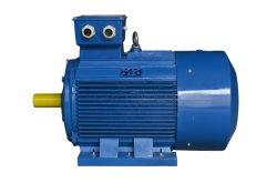 2HMI Series Motor/Ie2 (EFF1) High Efficiency Electric Motor Cast Iron