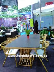Садовой мебелью столовая, плетеной Плетение с порошковое покрытие алюминиевых Bp-3023c