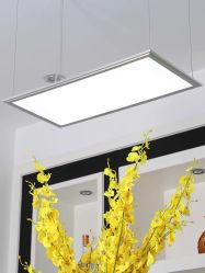 40W 295*1195mm LED Recessed Panel Light voor Office Suspended Ceiling White