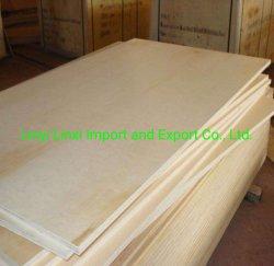 15mm/18mm CC/DD Grade Birch Plywood voor Furniture
